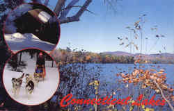 Connecticut Lakes Postcard