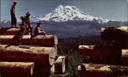 Northwest Havest of Logs