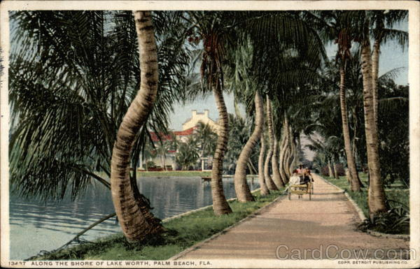 Along the Shore of Lake Worth Palm Beach Florida