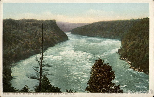 Niagara Rapids from the Lewiston Branch New York