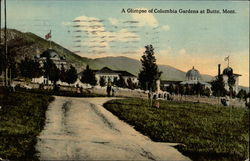 A glimpse of Columbia Gardens