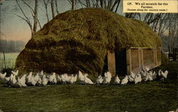 Chickens outside thatch-covered hen house