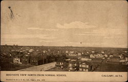Bird's-Eye View North from Normal School