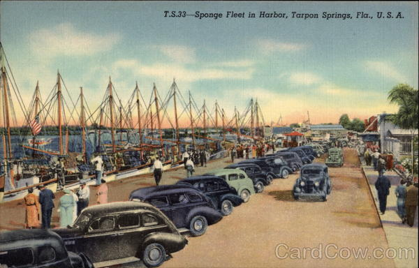 T.S.33 - Sponge Fleet in Harbor, Tarpon Springs, Fla., U.S.A Florida