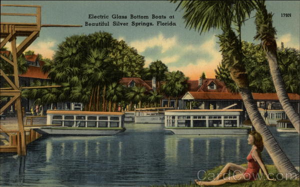 Electric Glass Bottom Boats at Beautiful Silver Springs Florida