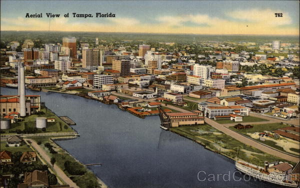 Aerial View of Tampa, Florida (T62)