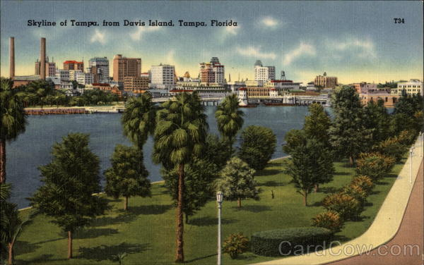Skyline of Tampa from Davis Island Florida