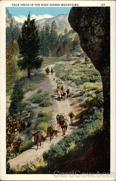 Pack Train in the High Sierra Mountains Cowboy Western