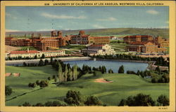 University fo California at Los Angeles Westwood Hills Postcard