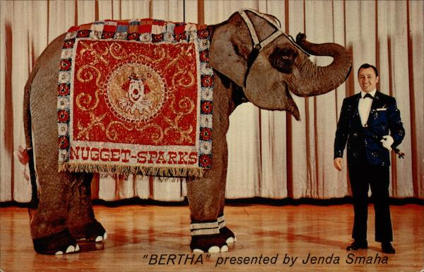 Bertha presented by Jenda Smaha Sparks Nevada
