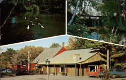 The Old Forge Restaurant Postcard