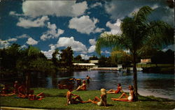Relaxing at wonderful Weeki Wachee Springs