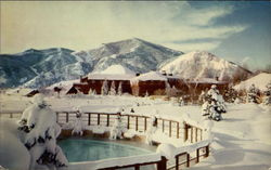 Winter - Swimming Pool and Lodge