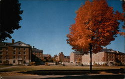 Hamilton-Thompson Halls Postcard
