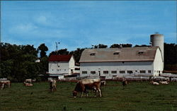 Farm in New Glarus, Wisconsin