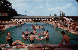 The Swimming Poll at Fernwood