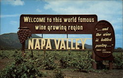 Welcome to this world famous wine growing region