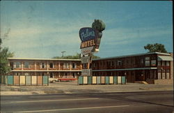 Palms Motel Postcard