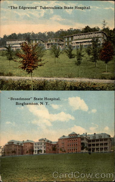 The Edgewood Tubercolosis State Hospital and Broadmoor State Hospital Binghamton New York
