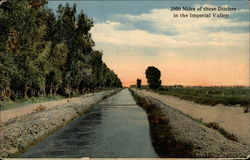 2000 miles of these ditches in the Imperial Valley