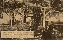 Mrs. Kate C. Bailey McCormick, Owner of Old Grapevine (Planted 1765)