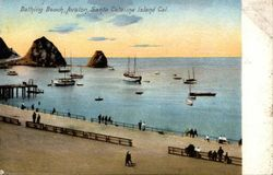 Bathing Beach, Avalon Postcard