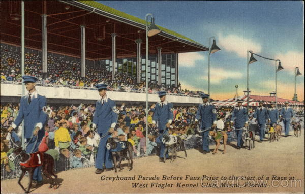 Greyhound Parade at West Flagler Kennel Club Miami Florida