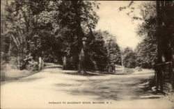 Entrance of Massenatt Estate Postcard
