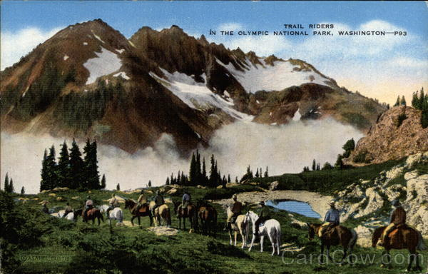 Trail Riders in the Olympic National Park Washington