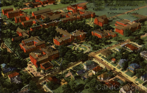 Aerial View of Florida State University Tallahassee