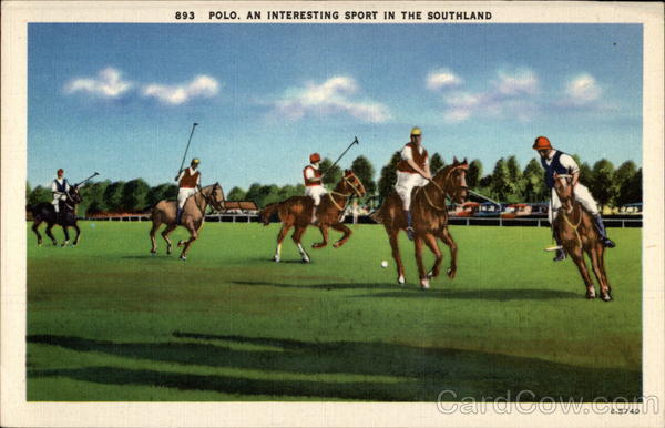 Polo, an Interesting Sport in the Southland
