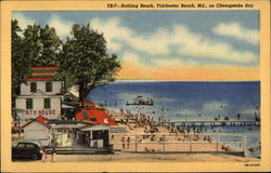 Bathing Beach on Chesapeake Bay Postcard