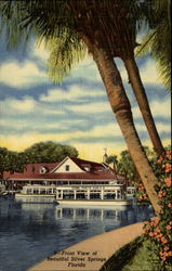 3-Front View of Beautiful Silver Springs Florida