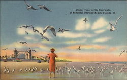Dinner Time for the Sea Gulls Postcard