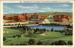 University of California at Los Angeles Westwood Hills Postcard