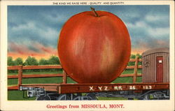 Greetings from Missoula, Montana Postcard