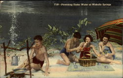 Picnicking Under Water at Wakulla Springs