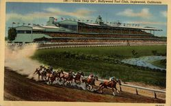 """There They Go,"" Hollywood Turf Club"
