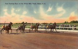 Fast Trotting Race on the Aiken Mile Track