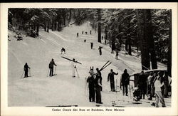 Cedar Creek Ski Run
