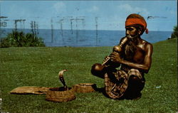Ceylon: Snake Charmer With Cobra