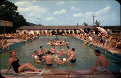 Fernwood-the swimming pool