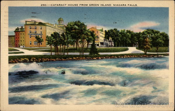A View of the Cataract House on the Niagra River Niagara Falls New York
