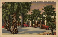 Palm Grove, North Beach