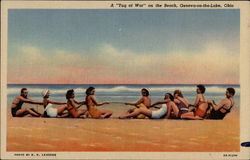 "A ""Tug of War"" on the Beach"