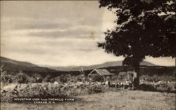 Mountain View from Trewald Farm Postcard