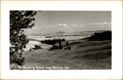 Country Scene Postcard