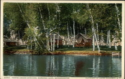 Tents Under Birches, Saranac Lake, Adirondacks