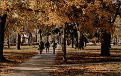 Autumn Scene, Miami University