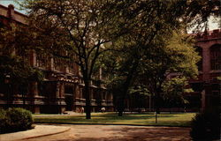 Law School and Harper Library, University of Chicago Postcard